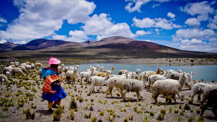 Eight reasons why you should Visit Peru!