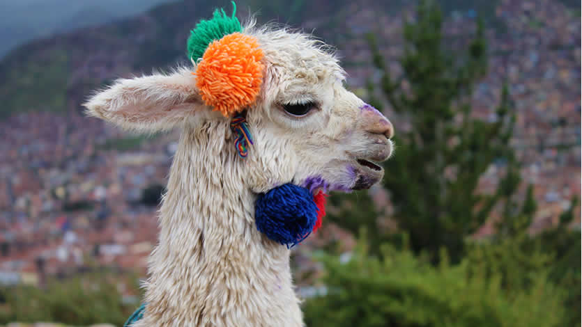 Perfect Peru Itineraries for One Week