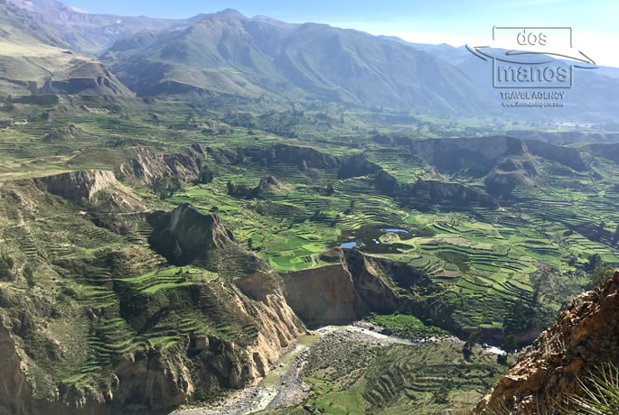 Trip to the Colca Canyon