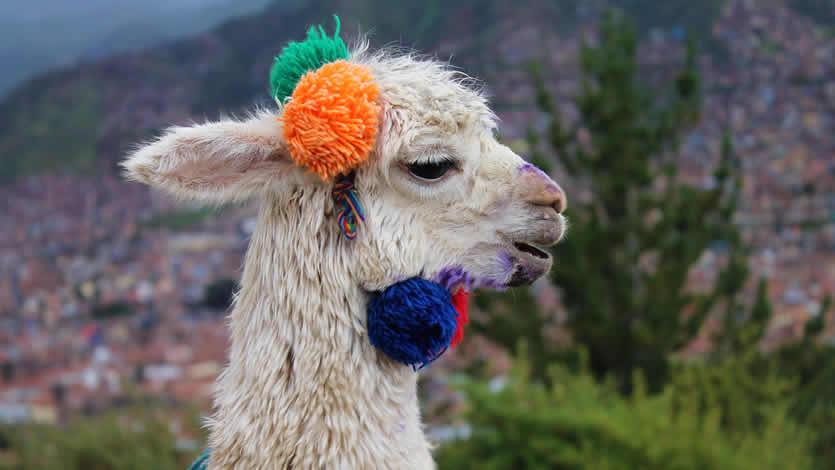 Itinerarios en Perú perfectos para una semana o diez días