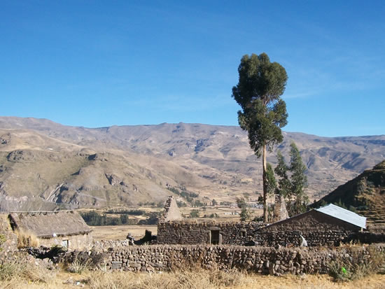 Visit the Colca Canyon