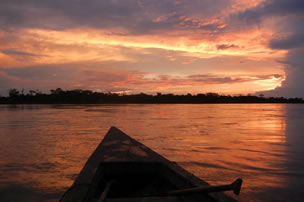 Iquitos Dschungel-Tour | 3 Tage