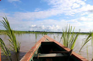 Iquitos Dschungel-Tour | 2 Tage