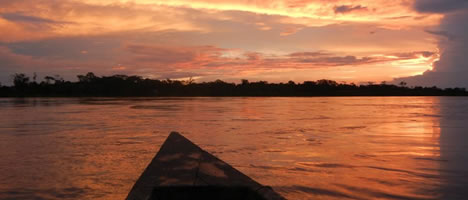 Iquitos Jungle Tour 3D / 2N