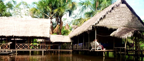 Iquitos Jungle Tour 4D / 3N