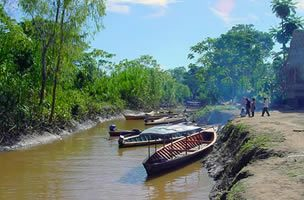 Tambopata Eco Adventure 4D 3N