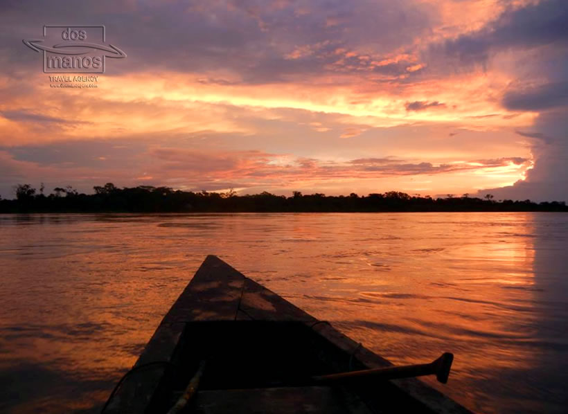 Iquitos Jungle Tour 3D/2N
