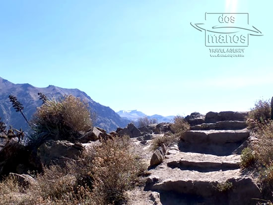 Colca Canyon Trek 2D/1N