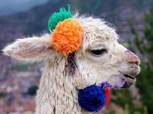 Perfect Peru Itineraries for One Week or Ten Days Travel
