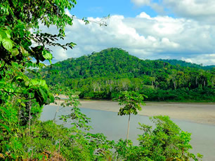 Learn Spanish in the Peruvian Rainforest!