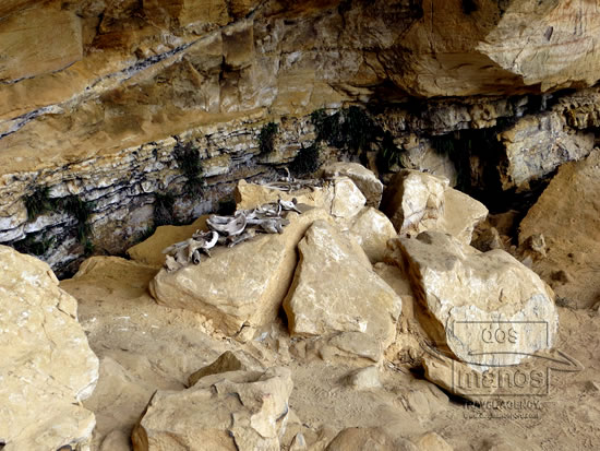 Caverns of Quiocta and Sarcophagi of Karajia