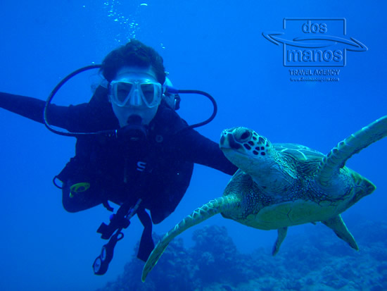 Snorkeling and Diving in Mancora