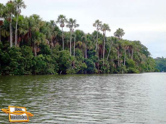Tambopata Ecological Jungle 2D / 1N