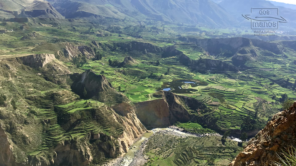 Colca Canyon Pictures