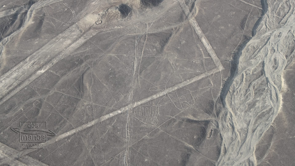 Extraordinary Nazca Lines in Peru