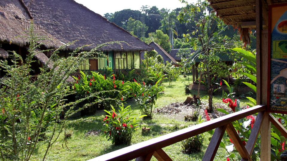 Jungle lodge in Manu National Park