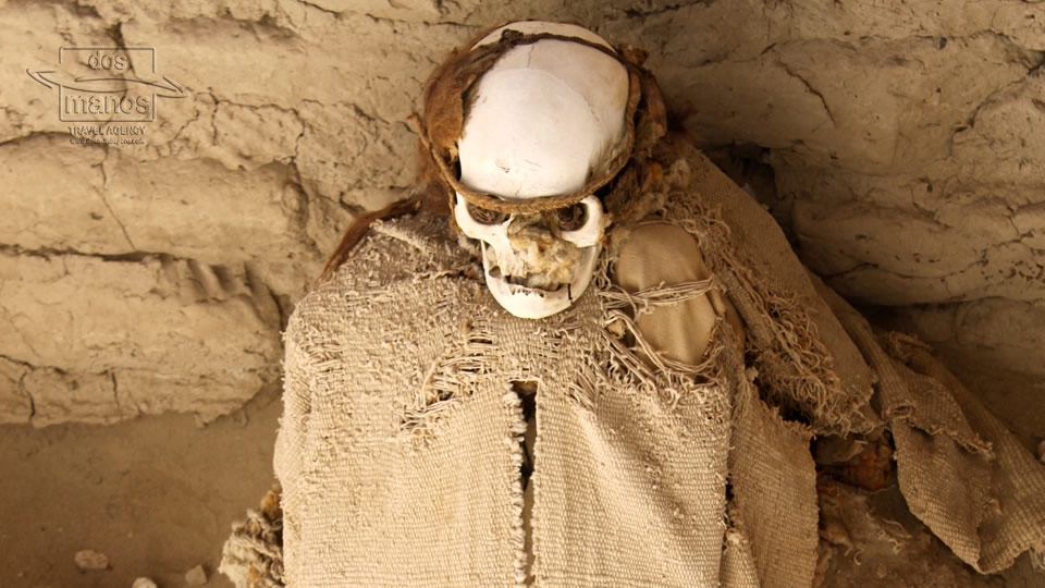 The Nazca Mummies