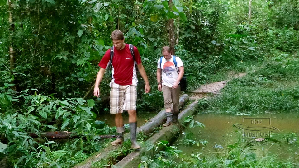 Tour into the rainforest, Iquitos